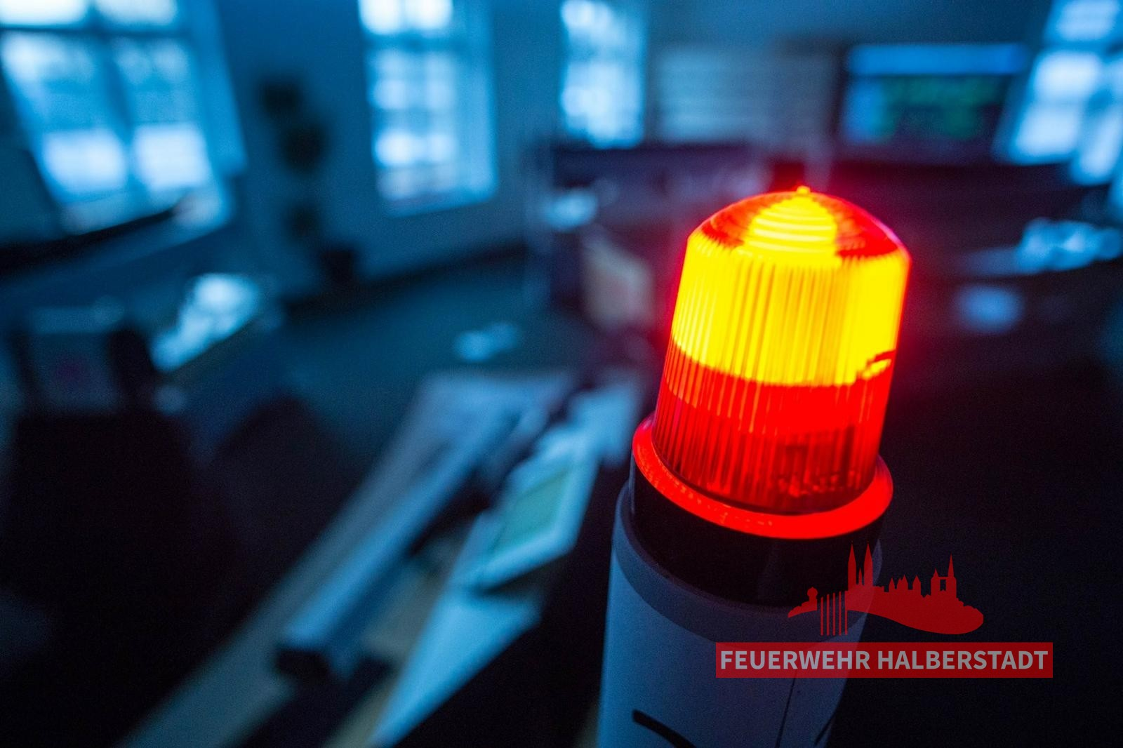 Turmfalke in Not – Maybachstraße